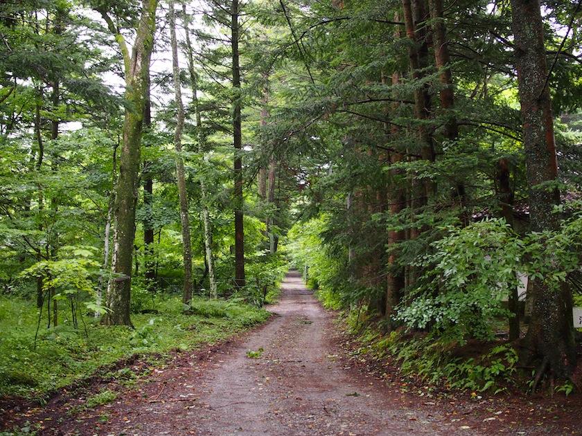 ささやきの小径の近くにて。軽井沢は、「つい入りたくなる」脇道が多い