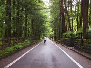 軽井沢自転車ルートマップ