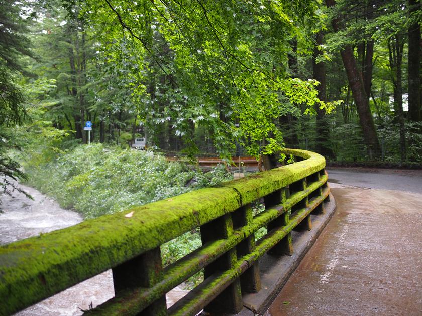 苔生した欄干が目に鮮やかな、二手橋