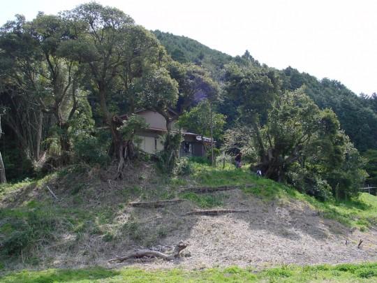 今よりぜんぜん管理が行き届いている!木々も、斜面の状態も、とてもすっきりしています。どんなに手間をかけていたのだろう。