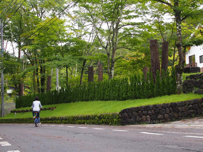 左右に瀟洒な別荘が並ぶ、三笠通り