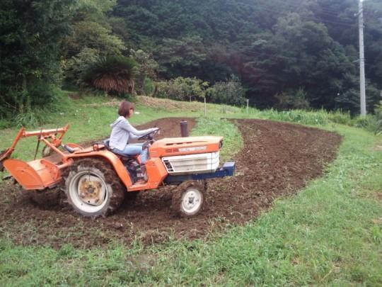 冬野菜の時期の前に、トラクターでしつこく耕耘しました。粘土質の土で、そのままだと鍬が入らないほど硬いのです。