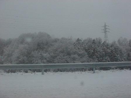 ここは白骨温泉か?というほどの積雪。道中が怖かった。