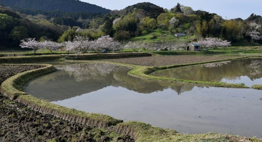 小さな田んぼが連なる里の風景。(撮影:小出一彦)
