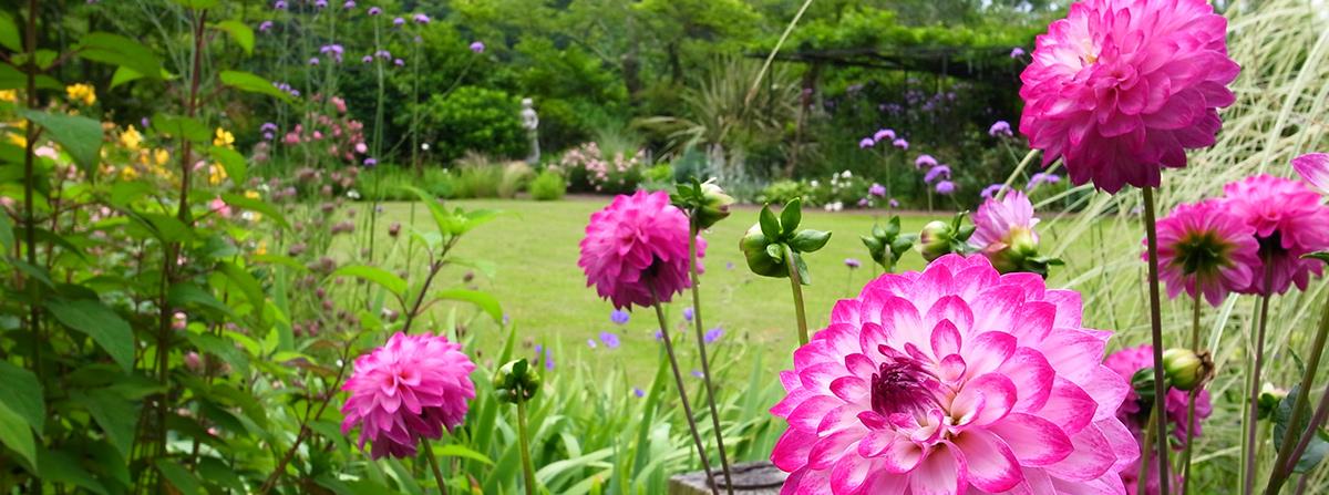 garden-1200x447_mainB