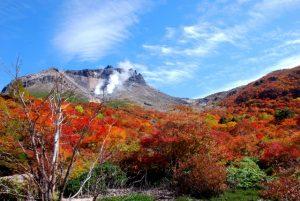 紅葉の那須高原