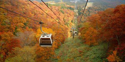 ゴンドラに乗って、いつもと違う目線で紅葉を愉しみませんか?