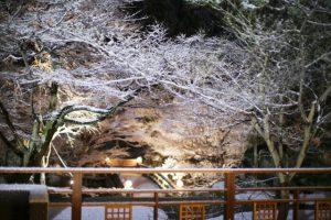 1.27ブログ用画像¥紙屋川(冬)