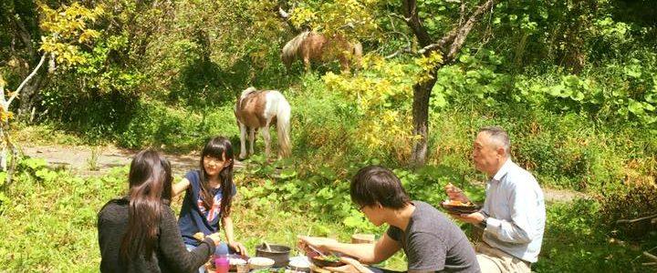 馬がいるだけで、風景の豊かさがこんなに変わるなんて。