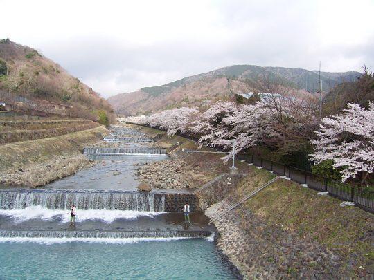 早川の堰堤