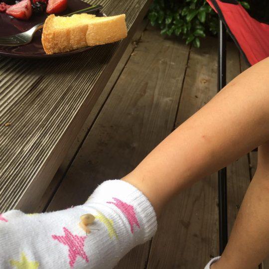 「足にかたつむりがー!」「ひゃははは!」「かたつむりが足にー!」何がおかしいのか分からない。