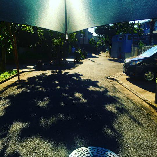 もう充分日焼けしてますが、日傘必要!熱射がすごい。