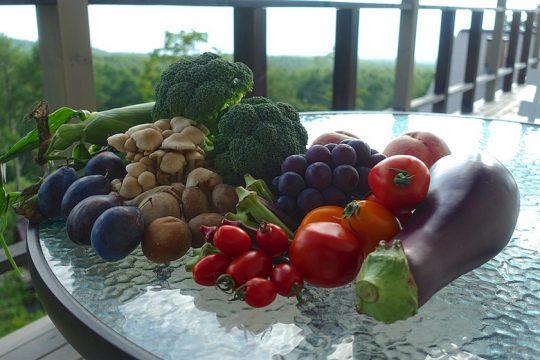 自由農園で買った新鮮野菜たち。