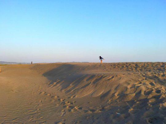 さらっさら。鳥取砂丘かと思うような広々とした砂地です。