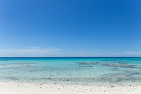 夏の楽しみは、やっぱり海