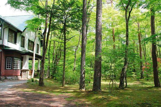 Karuizawa Forest 2