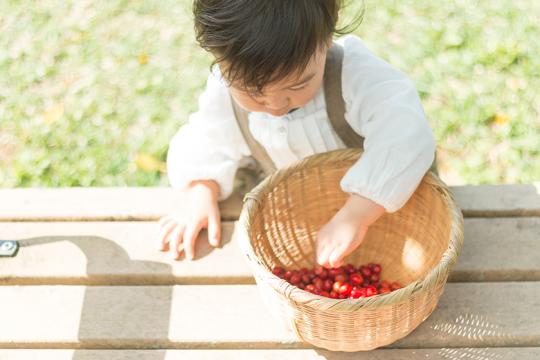 3月は近所で桜のみを収穫。砂糖に漬けてジュースを作った