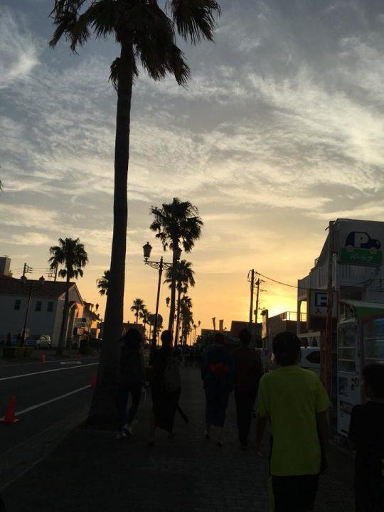 駅から海岸にのびる道の街路樹は、椰子。