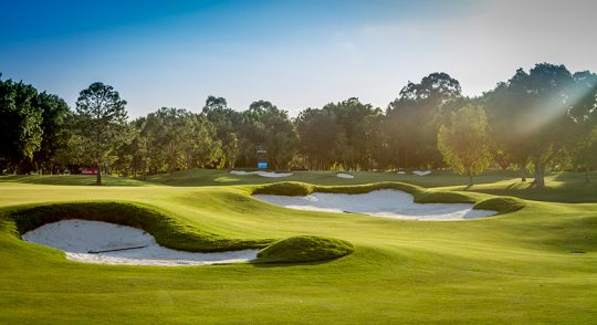 写真提供:RACV Royal Pines Golf Course