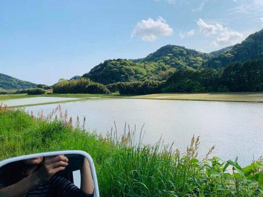 田んぼに水が張られる季節になりました。5月です。