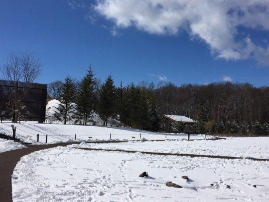 新雪に足跡を残したり、雪だるまをつくったり!