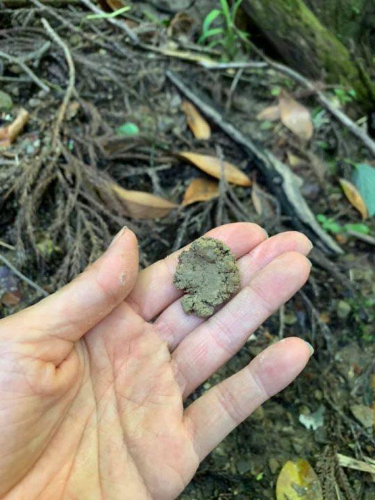 ぼろぼろせず、粘りとコシのある触り心地。見た目はただの土なのに、触ると、これで器がつくれるということがはっきり分かります。
