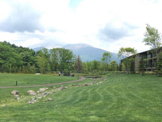 みずみずしい匂いが立ち上る春のグリーンフィールド
