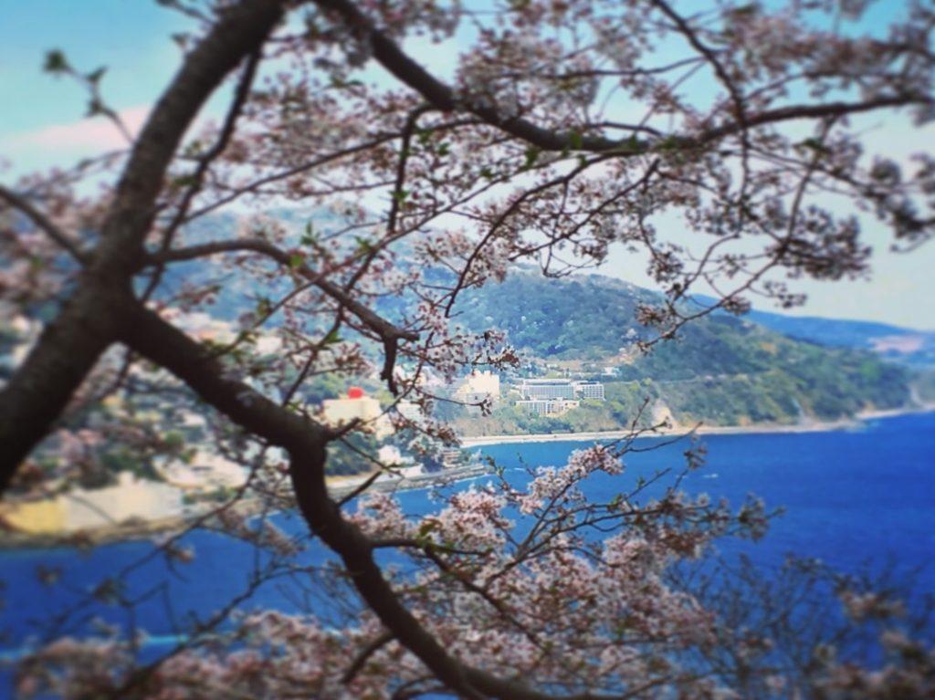 紺碧と蒼天と熱海花と施設