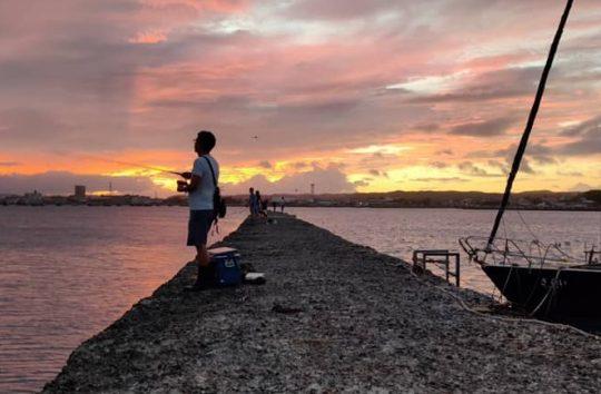 ほとんど連絡がなくて生きているんだかどうか心配になった頃、無造作に写真が送られてきます。これは「夕日が綺麗だった」と言いたかったのだと思います。