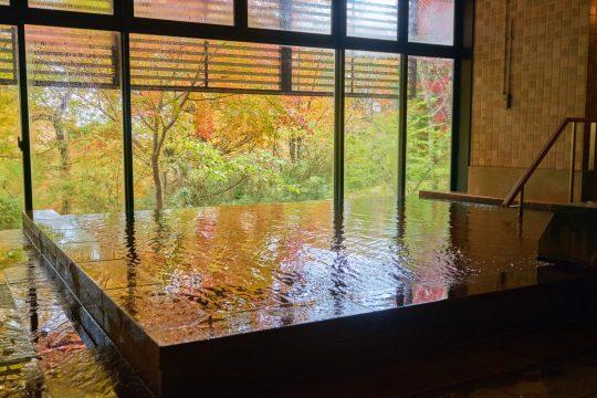 昼は東急ハーヴェストクラブ那須の温泉大浴場で