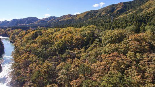 秋の鬼怒川沿い
