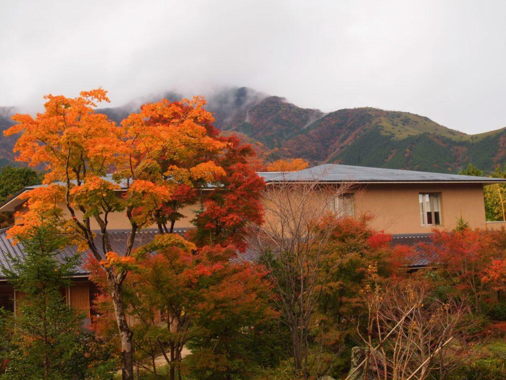 雲が垂れ込む外輪山と紅葉に染まる箱根翡翠