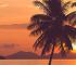 ハワイエリアでホテルコンドミニアムをご検討の方へ! ニーズ別のおすすめホテルコンドミニアム記事4選まとめ