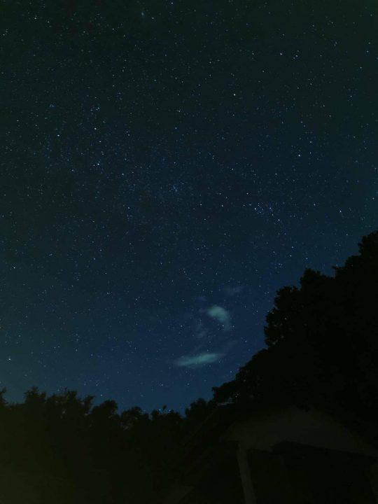 アナグマと会った日は、きれいな星空でした。