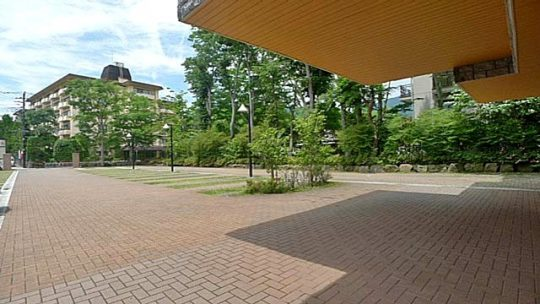 緑に囲まれた駐車場